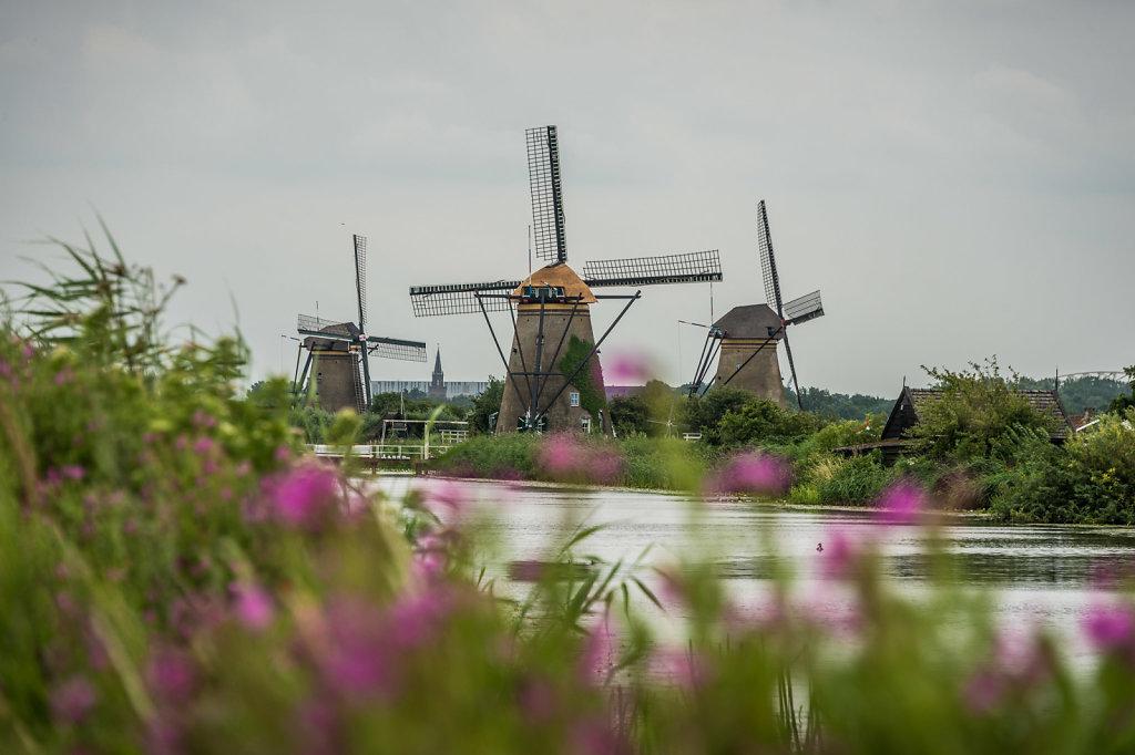 Kinderdijk-0715-2648.jpg