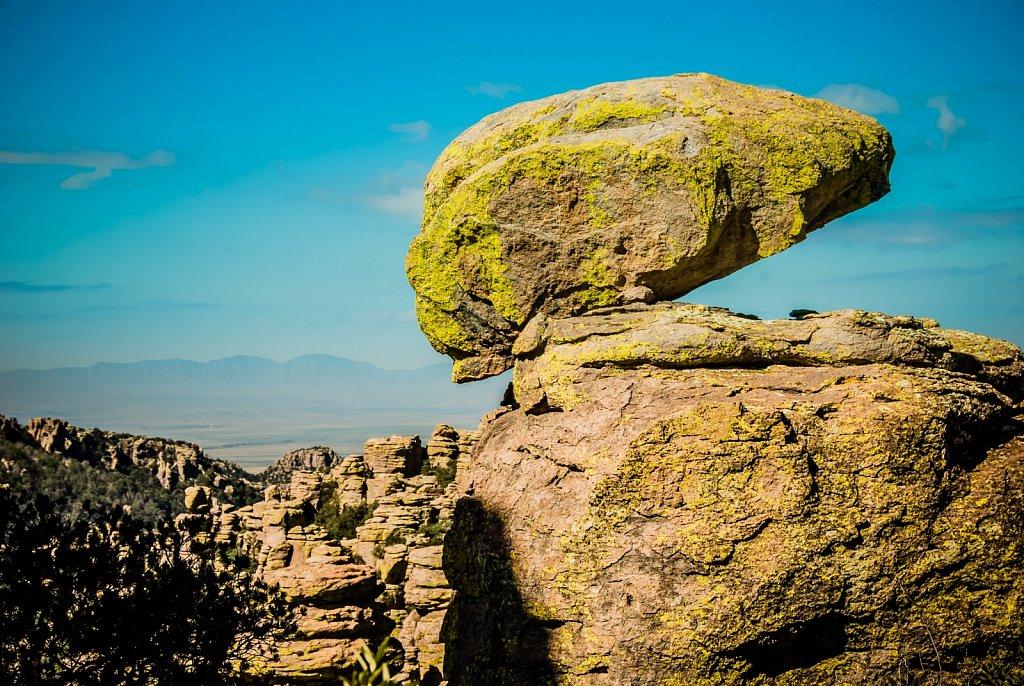 chiricahuas-0906-081.jpg
